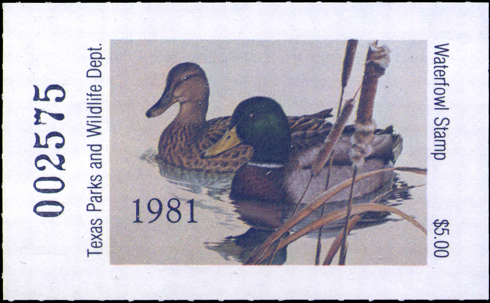 Texas duck stamps texas waterfowl stamp 1981 2012 sciox Choice Image
